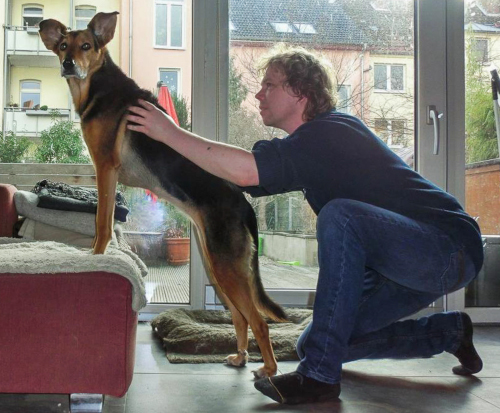 Hundephysiotherapie Hannover